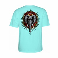 POWELL PERALTA MIKE VALLELY CELADON MINT TEE SKATE SKATEBOARD NEW